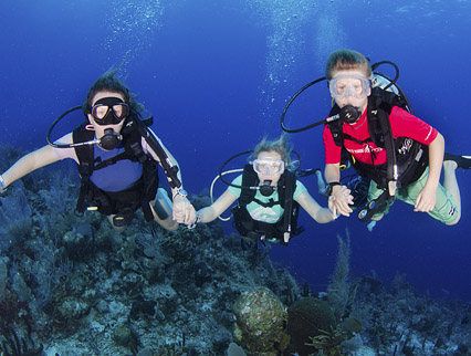 family diving