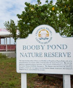 Booby Pond Nature Reserve